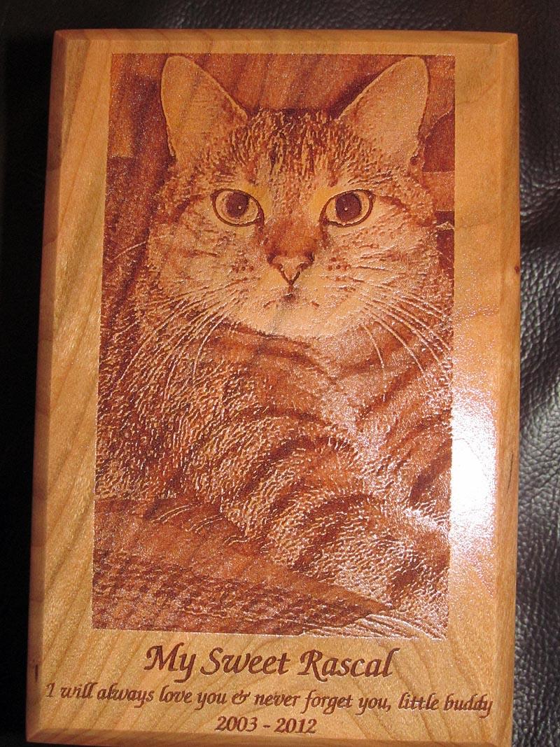 Laser Engraved Cat Urn